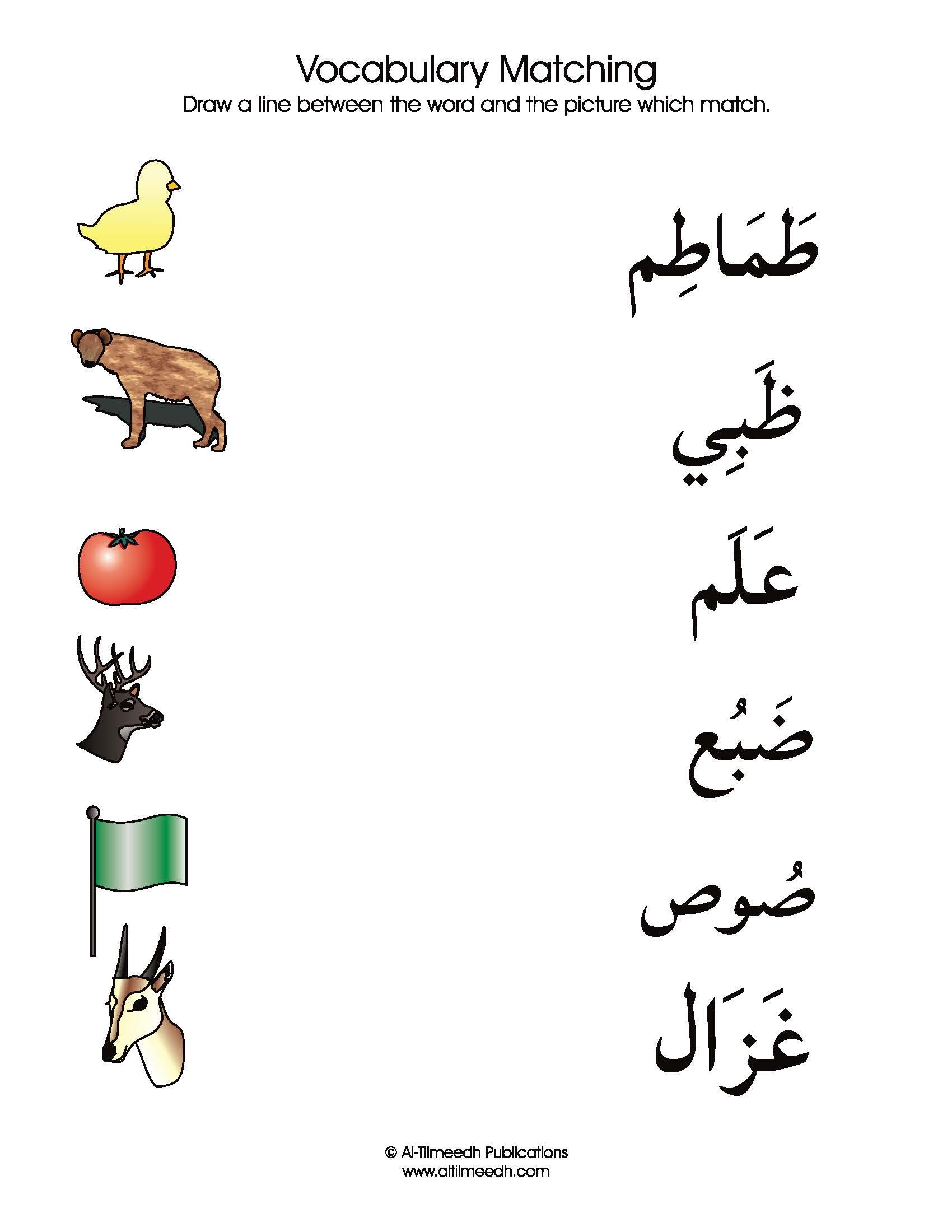 arabic vocabulary flash cards pdf